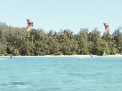 Lakana fly kite Moorea